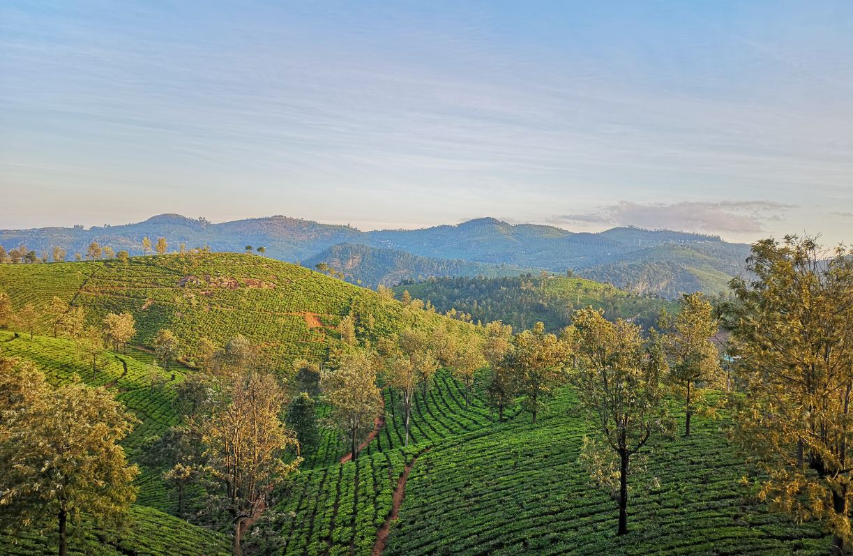 Sunvalley Homestay - Best Resort in Ooty