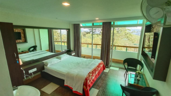 Green valley view Room
